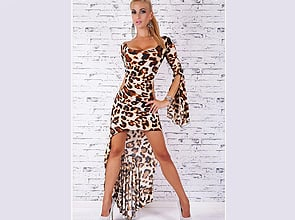 Animal Print DressAnimal Print Dress